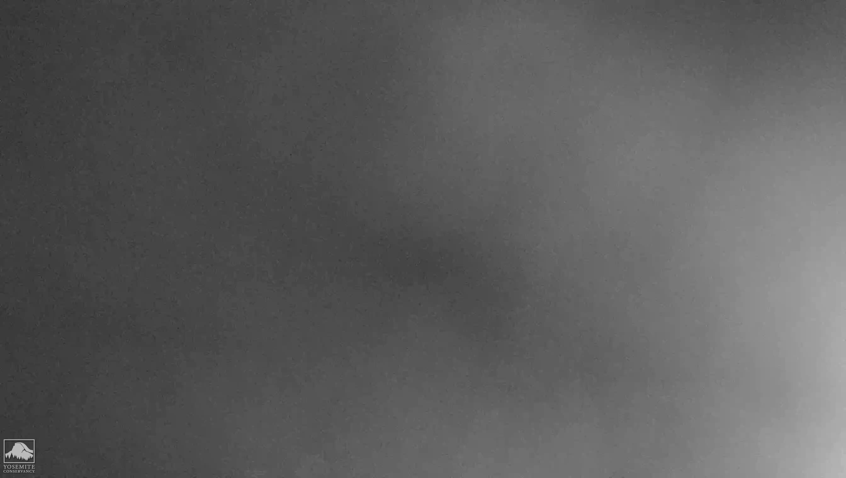 Yosemite Falls Meadow camera